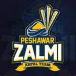 PSL 4 Peshawar Zalmi Team